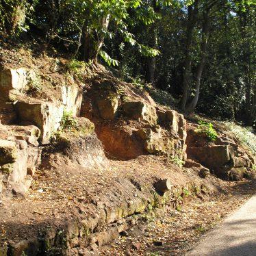 Geology at Kenilworth Old Railway Cutting
