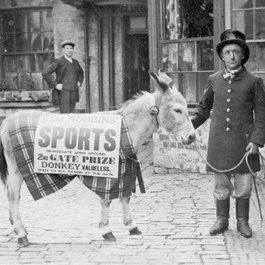 Nuneaton.  Sam Robbins' prize-winning donkey