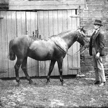 Nuneaton.  Iliffe's horse and groom