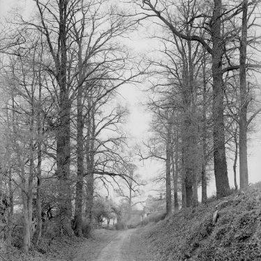 Alcester.  Mill Lane