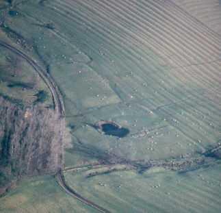 Earthwork remains of settlement at Upper Shuckburgh 100m E of Back Lodge