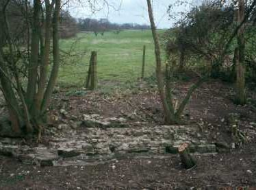 Moated Site 150m NW of Chesterton Church