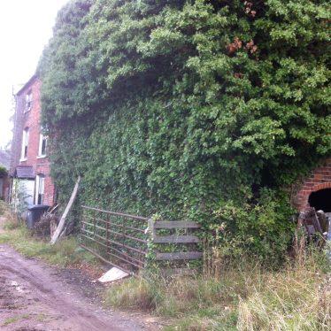 Biggin Mill, Newton