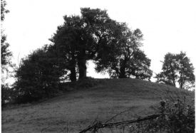 Brinklow Castle Mound (late 1960s, early 1970s).