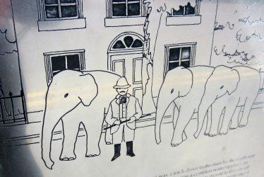 Elephants in Royal Leamington Spa