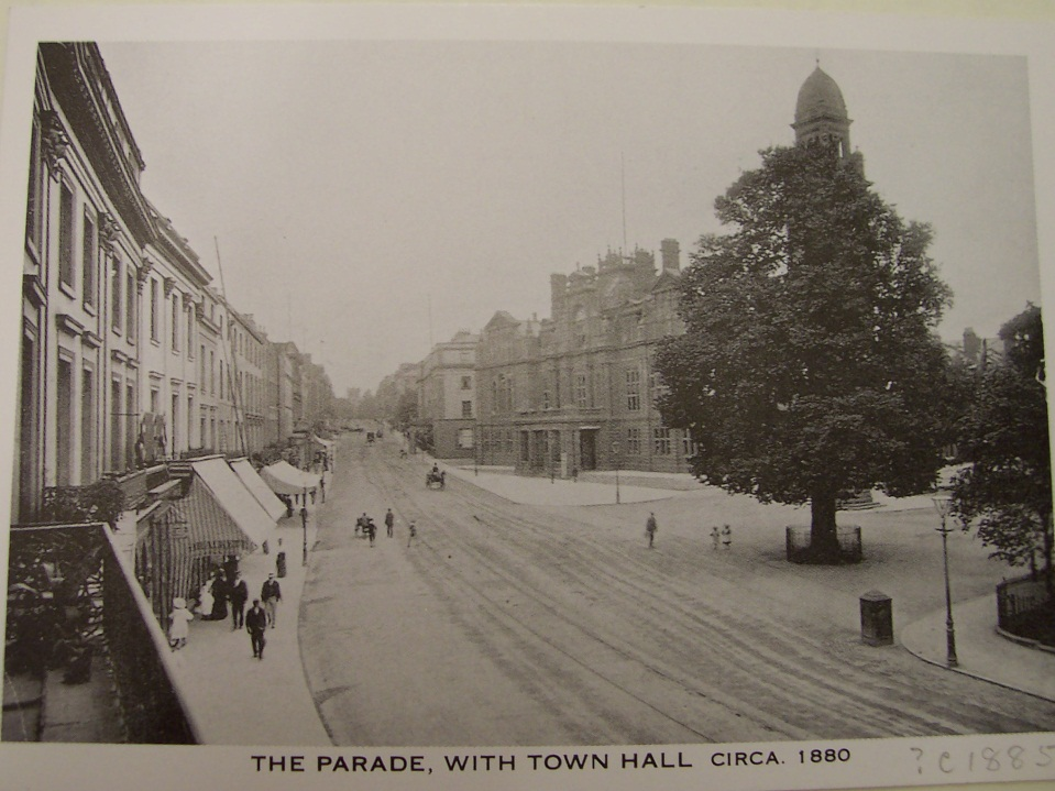 This postcard of the Parade in the 1880s shows the tree concerned
