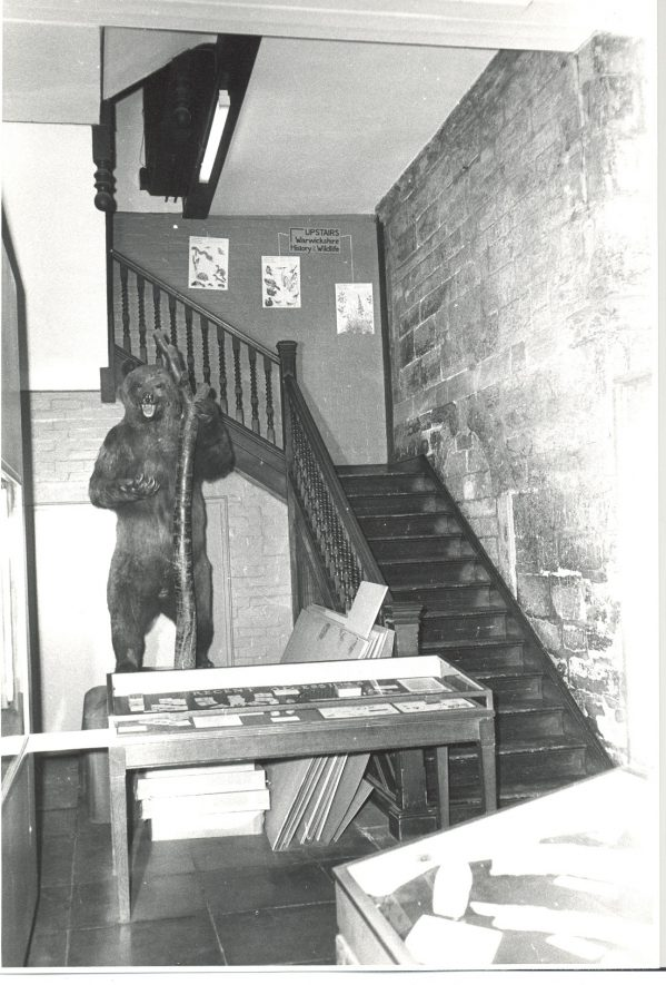 The Bear has lived in many places in Market Hall. here it is by the stairs to the first floor. | Photograph courtesy of Warwickshire Museum