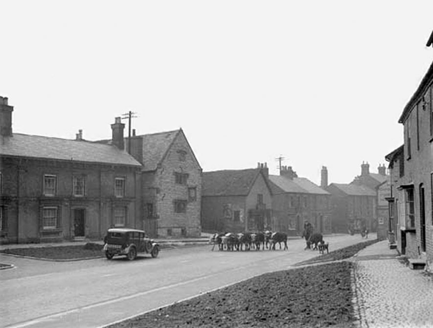 Drovers herding cattle down the middle of Southam on their way from Wales to the Midlands. Only one car is waiting for them to pass. | Photo courtesy of the photographic archive held in the Southam Heritage Collection.