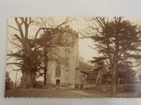 The Ancient Elm, Whitnash. This photograph was taken around the turn of the 20 th century. When the tree was cut down around 60 years later it was reputed to be over 1,000 years old. | Warwickshire County Record Office reference PH 352/200/13