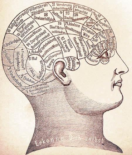 Illustration of phrenological head map. | Phrenologie1 Scan by deBenutzerSummi edited by Wolfgang - Bilz, Friedrich Eduard (1842–1922) Das neue Naturheilverfahren (75. Jubiläumsausgabe), 1894.. Licensed under Public Domain via Wikimedia Commons.