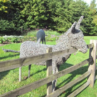 Woven wire sculpture of donkey looking over a fence | Anne Langley