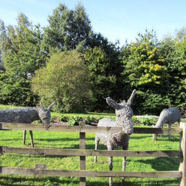 Three grey statues of donkeys made of wire; one grazing | Anne Langley