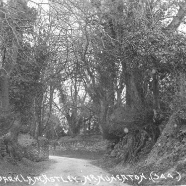 Dark Lane, Astley