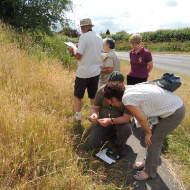 Grassland surveys in Weston Under Wetherley | WWT