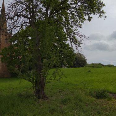 Shrunken Post Medieval Settlement at Church End
