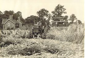 A balck and white photograph of a tractor moving through a field during harvest time | Photo courtesy of Jill Morrow