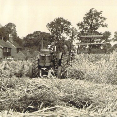 A Rural Boyhood in Nuneaton
