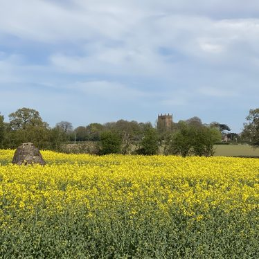Duke of Suffolk's Monument, Astley, with Astley church in the background | Lisa Davison