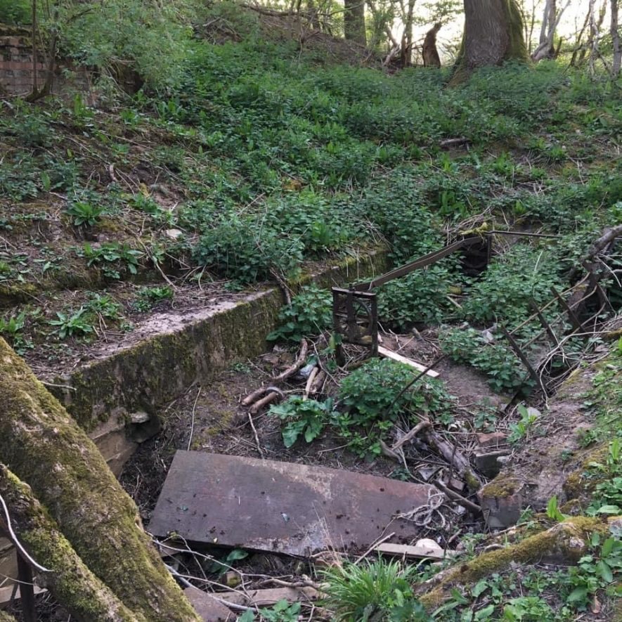 Wooded area with the remains of the Butts in foreground | Image courtesy of Bob Smith