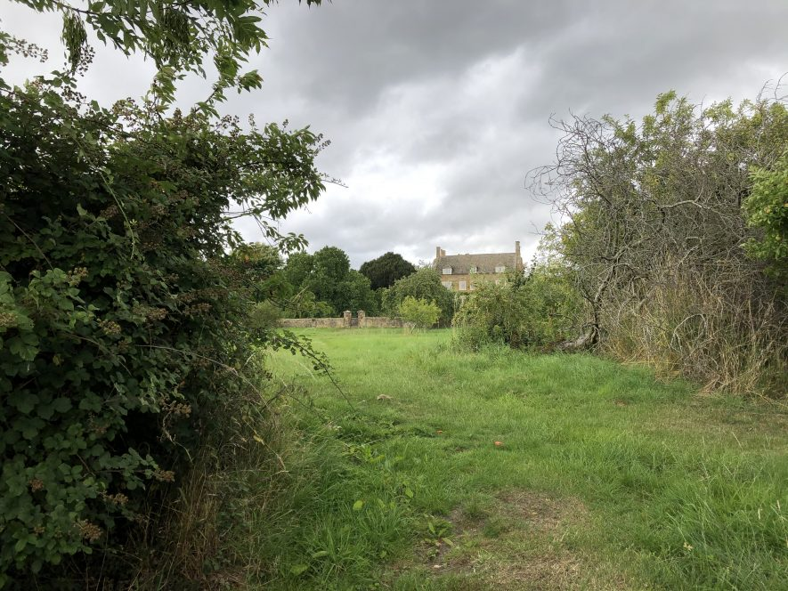 A winding grass track with overgrown hedges on either side leads to a house barely seen in the distance   Image courtesy of Will Wyatt, August 2020