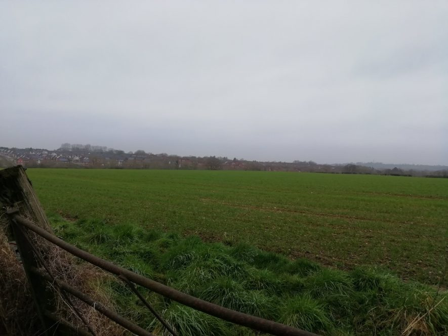 Flat green field with houses in background, gate in foreground | Image courtesy of Gary Stocker, February 2020
