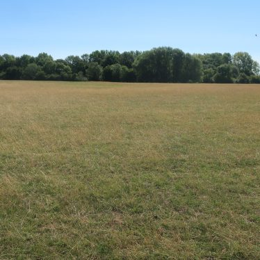flat field with line of trees and bushes in background | Image courtesy of Gary Stocker