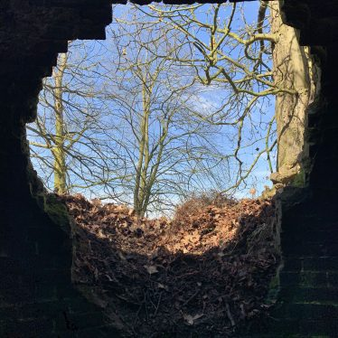 View from the inside of the Ice House, showing the full size of the entrance looking out to surrounding trees and blue sky. | Image courtesy of Matt Page, Warwickshire County Council