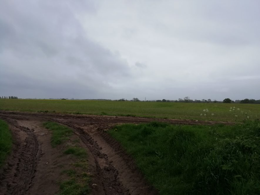 Countryside where Romans finds were found near to Roman Villa | Image courtesy of Gary Stocker, April 2020.