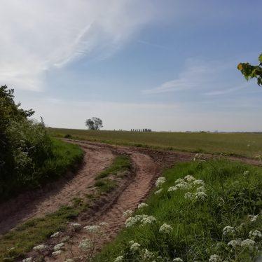 Site of Roman Villa 300m W of Pounce Hill Farm, Radford Semele.