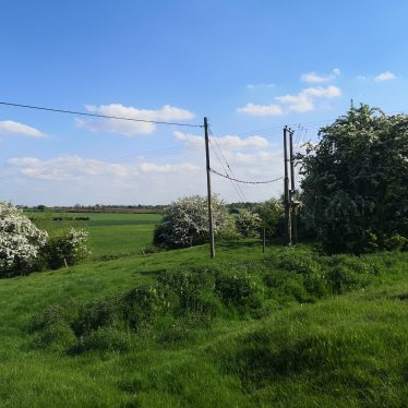 Low hummocks on right hand side of photo with bushes and telegraph poles in background | Dan Brown
