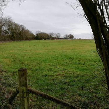 Findspot - Neolithic to Bronze Age flint, Nadbury Camp.