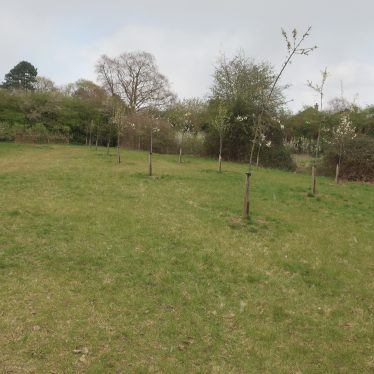 Site of Medieval Chapel at Myton