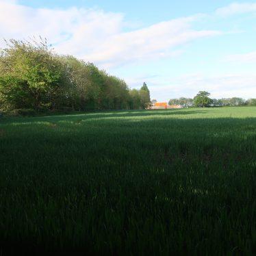 Gibbet Hill Anti Aircraft Artillery Site