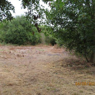 Site of C17 Baginton Hall 100m N of Church