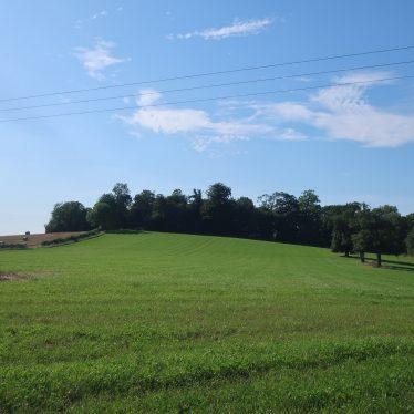 Windmill at Mill Hill Plantation, Edstone