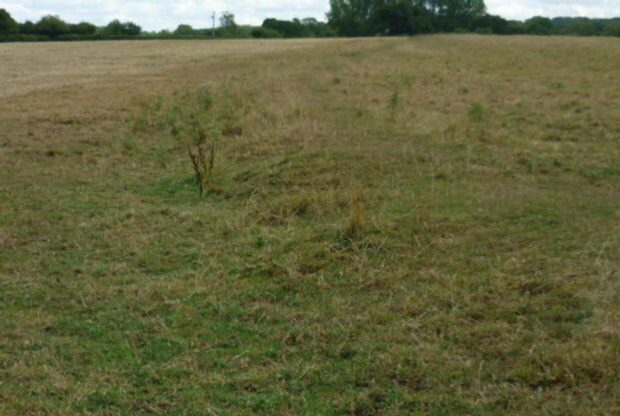 Ridge & Furrow cultivation in Henley in Arden Parish taken along a headland ( the last field before the footpath to Austerly wood crosses the first road), 2018. | Image courtesy of William Arnold
