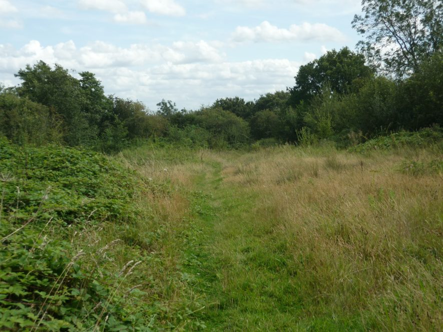 This section of the disused line is now a public footpath. Site of Mineral Railway at Ansley Hall Colliery, 2019 | Image courtesy of William Arnold