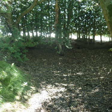 Western corner of the moat 100m S of Poors Wood, Honiley, 2019   Image courtesy of William Arnold