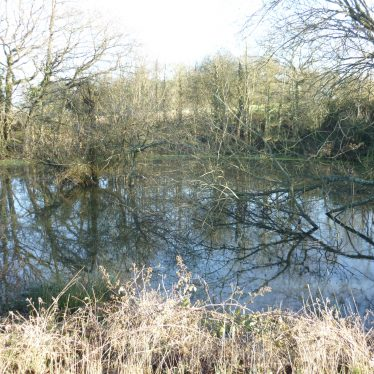 Poss fishpond, N of Cryfield Ho (Warwick Uni Eval)