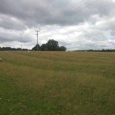 Ridge and furrow ploughing in Brinklow Parish