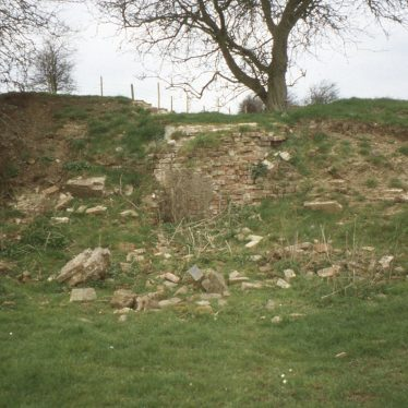 Hill with tree on top and remains of mill scattered down hillside   Image courtesy of Tim Booth
