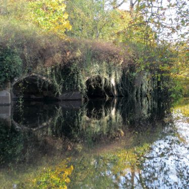 Stone arched bridge, overgrown, with reflection and autumn colours | Image courtesy of Anne Langley