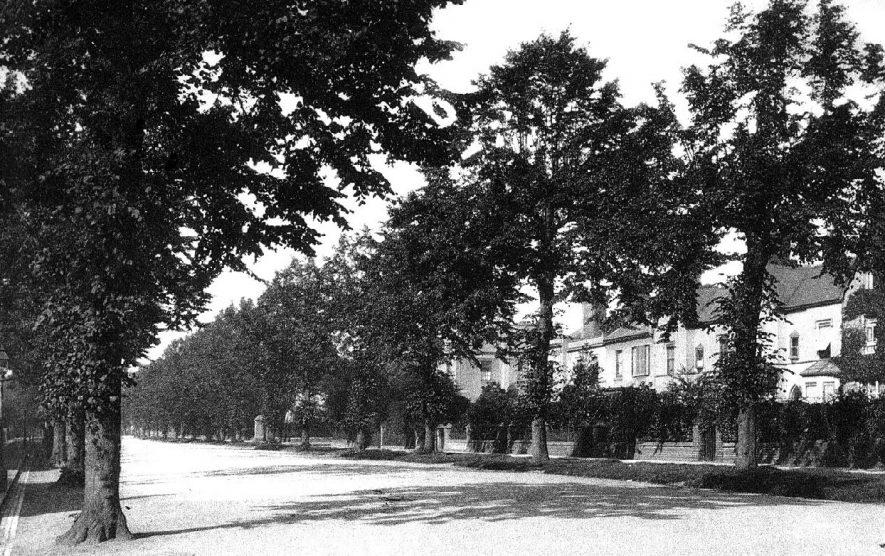 Beauchamp Avenue, Leamington Spa.  1900s |  IMAGE LOCATION: (Warwickshire County Record Office)