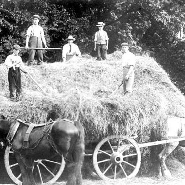 Hatton.   Asylum, haymaking at the farm