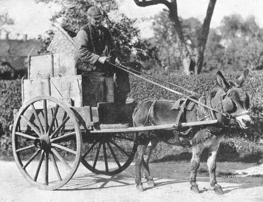 An old peddler in Nuneaton.  1910s |  IMAGE LOCATION: (Warwickshire County Record Office)
