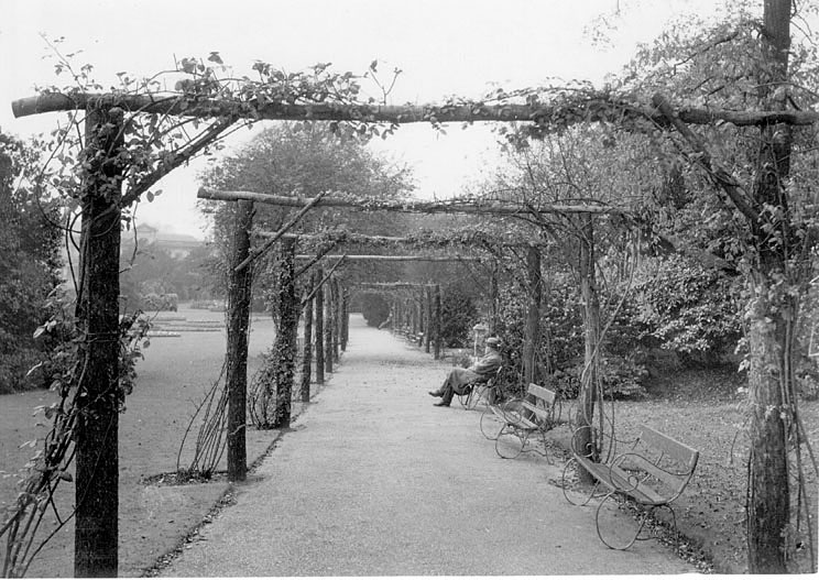 The Rose Walk in Jephson Gardens, Leamington Spa.  1950s |  IMAGE LOCATION: (Warwickshire County Record Office)