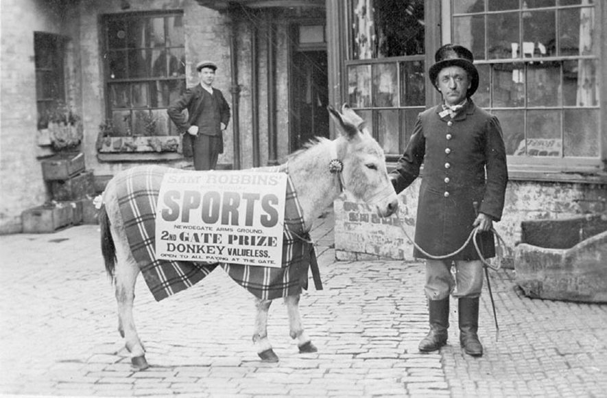 Sam Robbins' Cycle Manufacturer, Second Gate prize-winning donkey, Nuneaton.  1910s |  IMAGE LOCATION: (Warwickshire County Record Office)