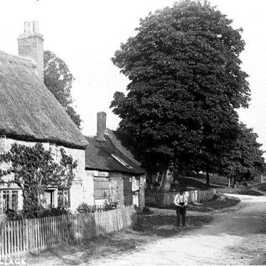 Lighthorne.  Thatched cottages