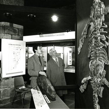 The Wilmcote Plesiosaur in its final position on the ground floor in Market Hall Museum, mid-1970s refurbishment.   Image courtesy of Warwickshire Museum