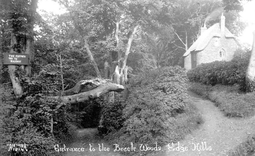 Entrance to the beech woods, Edgehill, Radway.  1920s |  IMAGE LOCATION: (Warwickshire County Record Office)